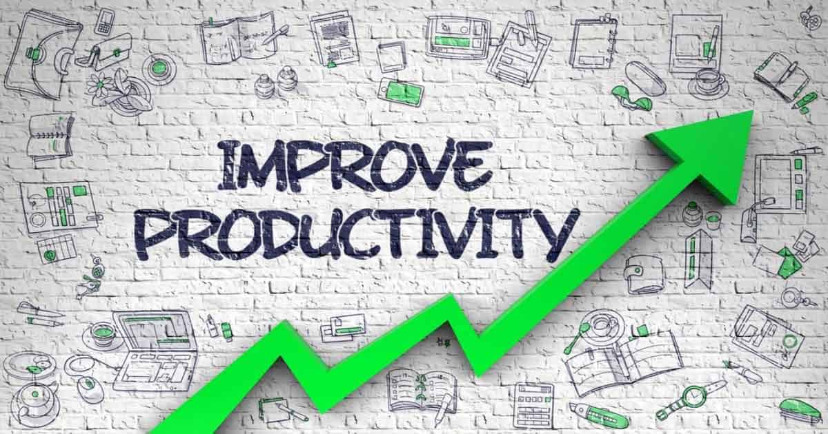 Productivity and Appraisal Software Consulting Services