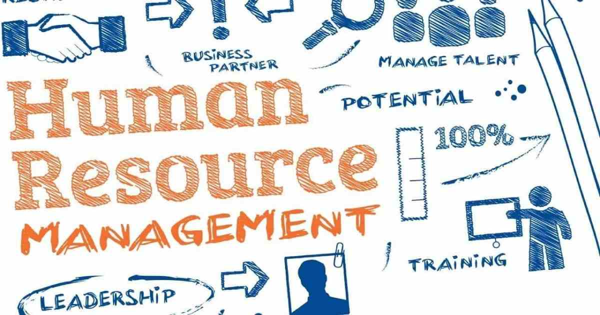 Top Human Resource Management Software